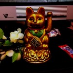 Lucky cat and cherry blossom